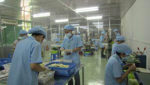 Nhà máy Công ty Cổ phần Dược phẩm CVIN Việt Nam